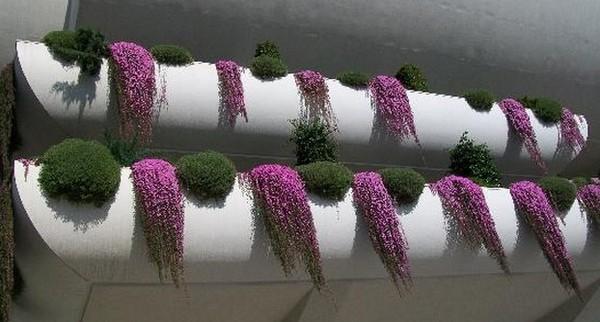jardim-na-varanda-5